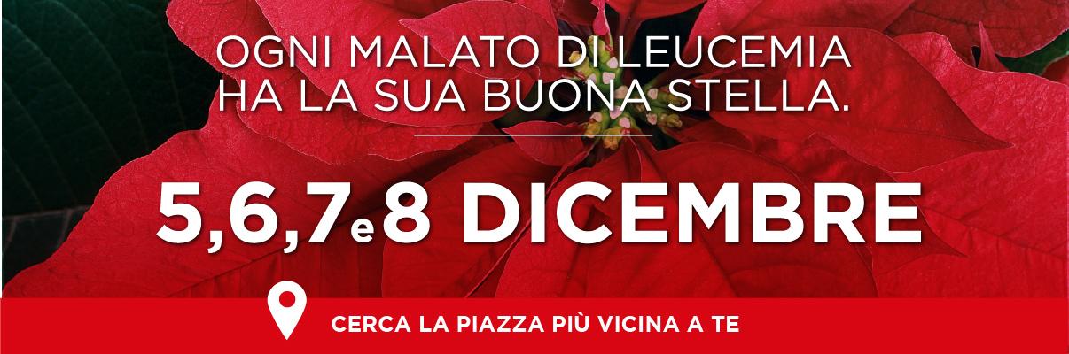Prezzo Stella Di Natale Ail.Sezione Aia Di Palermo Peppino Cirone Pagina 64
